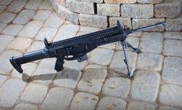 Rifle ostentando moderno Fotografia de Stock