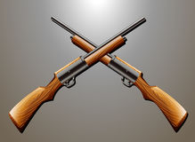 Rifle. Pair of rifle guns hanging on the wall Royalty Free Stock Image