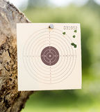 Rifle target. Somebody was shooting at a paper rifle target stock images