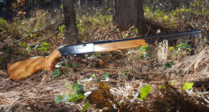Rifle in the trees Royalty Free Stock Photo
