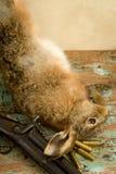 Rifle y puntos negros de la caza Imagen de archivo libre de regalías