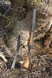Rifles de la caza fotografía de archivo