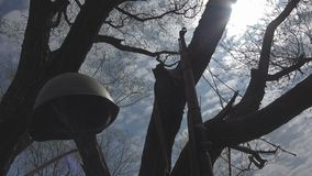 Rifles and helmets of the Soviet army of the Second World War. Rifles and a helmet of the Soviet army of the times of the second world near the tree stock footage