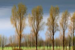 riflessione Fotografie Stock