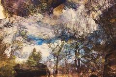 Riflessione astratta degli alberi su acqua increspata Immagine Stock