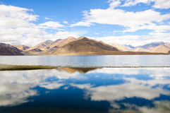 Riflessione bella del lago Pangong, Ladakh, India Fotografia Stock