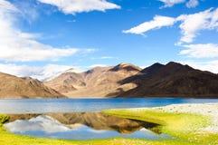 Riflessione bella del lago Pangong, Ladakh, India Immagini Stock Libere da Diritti