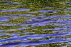 Riflessione in blu e nel verde Fotografie Stock Libere da Diritti
