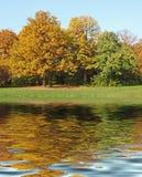 Riflessione degli alberi di autunno Fotografia Stock