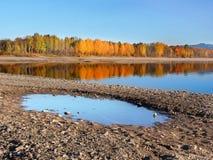 Riflessione degli alberi in Liptovska Mara all'autunno fotografia stock libera da diritti