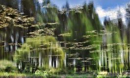 Riflessione degli alberi nel lago Fotografie Stock
