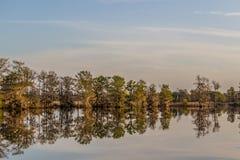 Riflessione degli alberi sulla Carolina del Sud ICW all'insenatura della strada transitabile fotografie stock libere da diritti