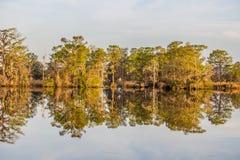 Riflessione degli alberi sulla Carolina del Sud ICW all'insenatura della strada transitabile fotografia stock libera da diritti