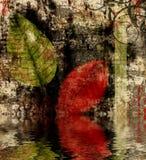 Riflessione dei fogli di autunno Fotografia Stock