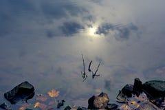 Riflessione del cielo nel chiaro lago della montagna Fotografia Stock