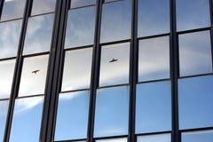 Riflessione del cielo sulle finestre con gli uccelli neri Immagini Stock