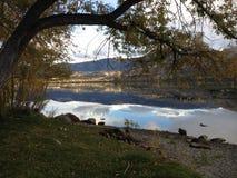 Riflessione del fiume Fotografie Stock