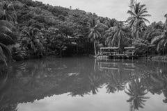 Riflessione del lago Immagine Stock