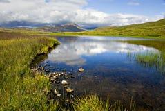 Riflessione del lago Denali Fotografia Stock