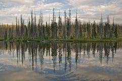 Riflessione del lago Lewis Fotografia Stock