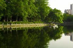 Riflessione del lago in una sosta Fotografia Stock