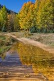 Riflessione del paesaggio di caduta di Colorado Fotografie Stock Libere da Diritti