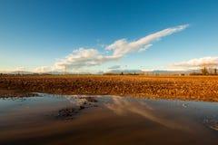 Riflessione del pomeriggio soleggiato nella pozza Fotografia Stock