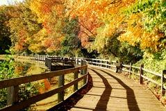 Riflessione del ponticello di autunno immagini stock libere da diritti