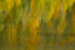 Riflessione dell'acqua della foresta di autunno Fotografia Stock