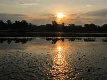 Riflessione dell'alba nell'acqua fotografie stock