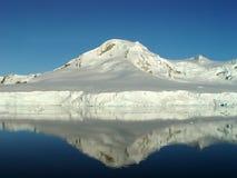 Riflessione dell'Antartide Immagine Stock