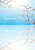 Riflessione della filiale di alberi di inverno Fotografia Stock