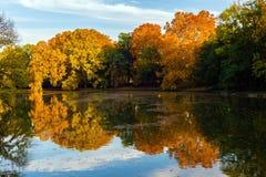 Riflessione della foresta di autunno Fotografia Stock Libera da Diritti