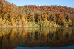 Riflessione della foresta di autunno in lago Lucelle Immagine Stock