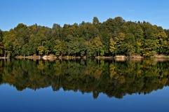 Riflessione della foresta in lago Fotografia Stock