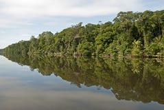 Riflessione della giungla in canale navigabile immagini stock libere da diritti