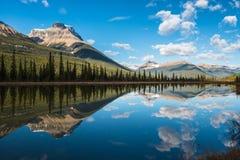 Riflessione della montagna nel lago waterfowl Immagini Stock Libere da Diritti