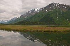 Riflessione della montagna sulla palude di Kenai Fotografia Stock Libera da Diritti