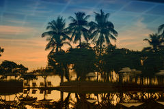 Riflessione della palma della siluetta nello stagno con il fondo d'annata del filtro Fotografia Stock