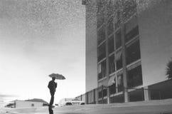 Riflessione della pioggia Fotografie Stock
