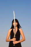 Riflessione della spada Fotografia Stock