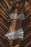 Riflessione delle foglie di palma sul corpo Fotografie Stock