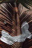 Riflessione delle foglie di palma sul corpo Immagini Stock
