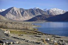 Riflessione delle montagne sul lago Pangong con il fondo del cielo blu Leh, Ladakh, India Immagini Stock