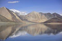 Riflessione delle montagne sul lago Pangong con il fondo del cielo blu Leh, Ladakh, India Immagine Stock Libera da Diritti