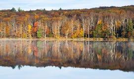 Riflessione di autunno Fotografie Stock