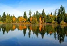 Riflessione di autunno Immagine Stock