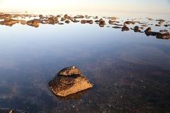 Riflessione di bassa marea Fotografia Stock