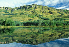 Riflessione di Drakensberg Fotografia Stock
