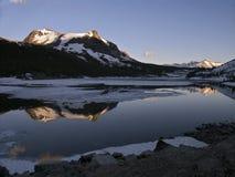 Riflessione di Mt. Dana Immagine Stock